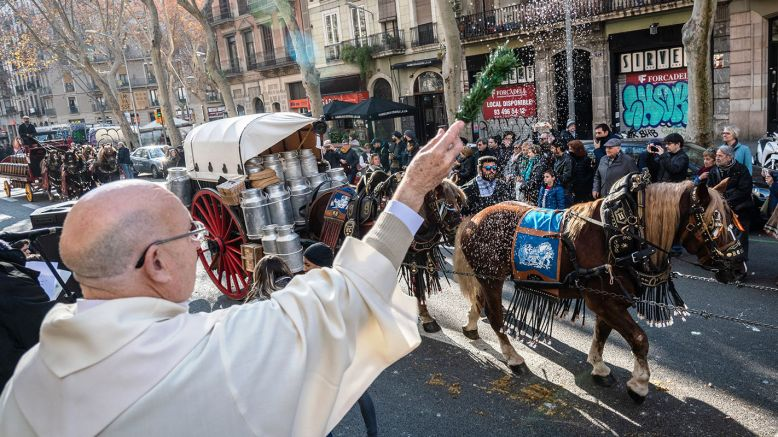 La tradicional benedicció dels animals | Federació Catalana dels Tres Tombs