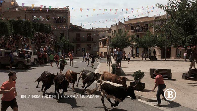 Les festes de bous i la identitat ebrenca
