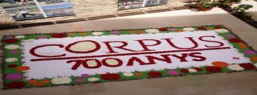 Les catifes florals i el bestiari, protagonistes de tres exposicions al Born CCM