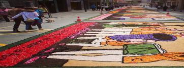 L'art de les catifes de flors, protagonista a l'Ateneu per Corpus