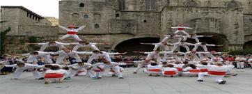 Falcons de Barcelona, un recorregut per una dècada a Ciutat Vella