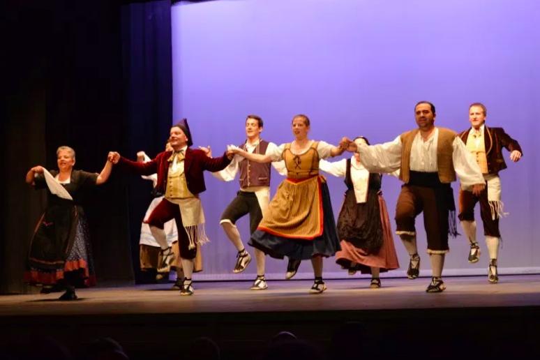 L'enquesta de l'Agrupament d'Esbarts Dansaires va adreça exclusivament a les entitats associades